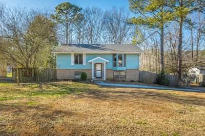 Ringgold Single Family Home For Sale: 231 Merilyn Drive