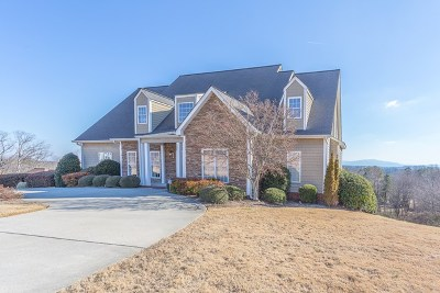 Cohutta, Varnell Single Family Home For Sale: 401 Overlook Way
