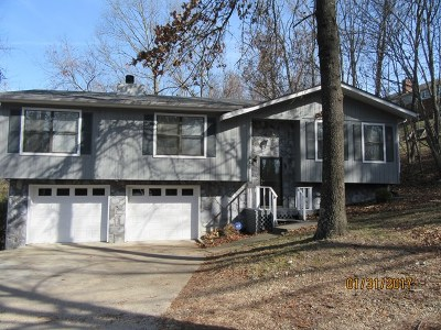 Ringgold Single Family Home For Sale: 460 Pine Grove Access Road