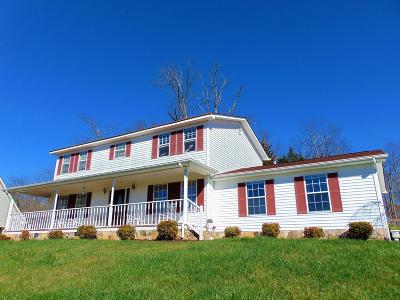 Ringgold Single Family Home For Sale: 530 Rolling Hills Drive