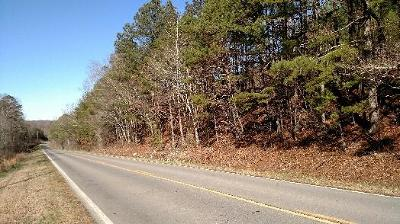 Cohutta, Varnell Residential Lots & Land For Sale: 00 Chattanooga Road