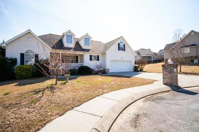 Ringgold Single Family Home For Sale: 158 Creekview Drive