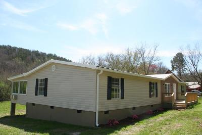 Ringgold Single Family Home For Sale: 1229 Houston Valley Road