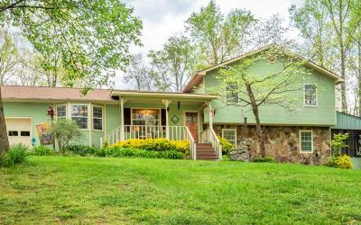 Rocky Face Single Family Home For Sale: 1620 Saddlebrook Drive