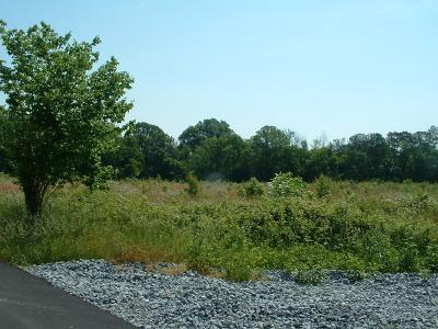 Catoosa County, Whitfield County, Murray County Commercial For Sale: 405 E Fields Rd