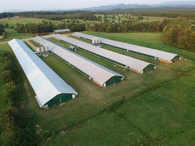Catoosa County, Whitfield County, Murray County Commercial For Sale: 1168 Sugar Creek Road