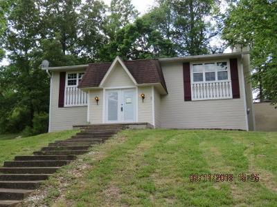 Ringgold Single Family Home For Sale: 135 Shamrock Drive