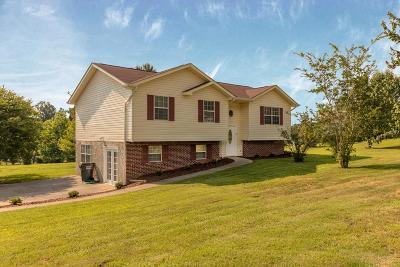 Dalton Single Family Home For Sale: 1433 Dustin Drive