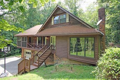 Cohutta, Varnell Single Family Home For Sale: 307 Skyline Drive