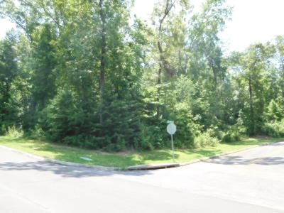 Cohutta, Varnell Residential Lots & Land For Sale: Chinaberry