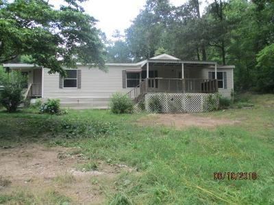 Ringgold Single Family Home For Sale
