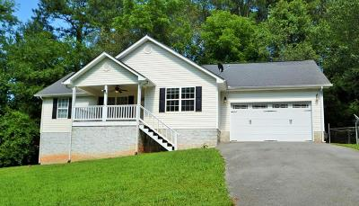 Ringgold Single Family Home For Sale: 63 Apple Road