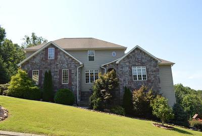 Rocky Face Single Family Home For Sale: 456 Battleline Drive