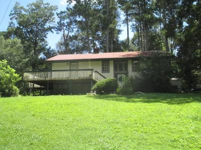 Rocky Face, Tunnel Hill Single Family Home For Sale: 3952 Chattanooga Road