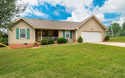 Ringgold Single Family Home For Sale: 59 Chad Drive