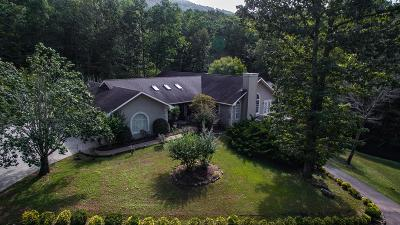Rocky Face, Tunnel Hill Single Family Home For Sale: 2505 Dug Gap Mountain Road