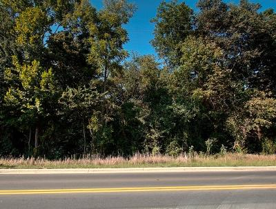 Chatsworth, Eton, Cohutta, Varnell, Dalton, Ringgold, Rocky Face, Tunnel Hill Residential Lots & Land For Sale: 1040 Willowdale Road