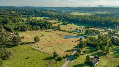 Chatsworth, Eton, Cohutta, Varnell, Dalton, Ringgold, Rocky Face, Tunnel Hill Residential Lots & Land For Sale: Lot 4 Edgeman Road