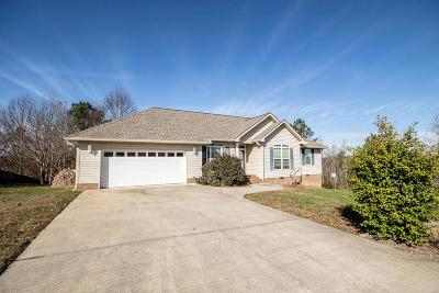 Ringgold Single Family Home For Sale: 22 Promise Heights Drive