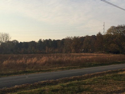 Catoosa County, Whitfield County, Murray County Commercial For Sale: 368 E Field Road