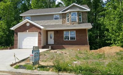 Dalton Single Family Home For Sale: 1160 Brookstone Circle