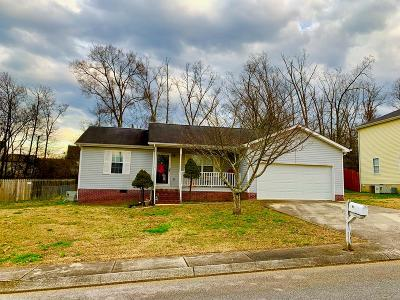 Ringgold Single Family Home For Sale: 81 Night Shade Lane
