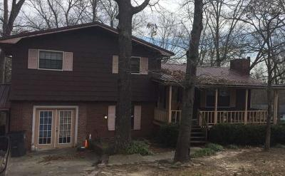 Cohutta, Varnell Single Family Home For Sale: 4056 Village Drive