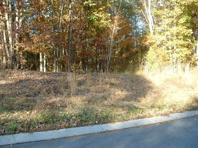 Rocky Face, Tunnel Hill Residential Lots & Land For Sale: 00 Arbor View Drive