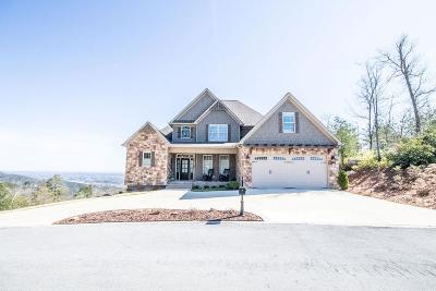Dalton Single Family Home For Sale: 1009 Bald Eagle Lane