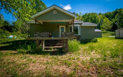 Ringgold Single Family Home For Sale: 574 Dug Road