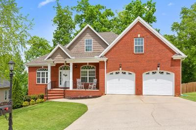 Ringgold Single Family Home For Sale: 411 Kailors Cove Circle