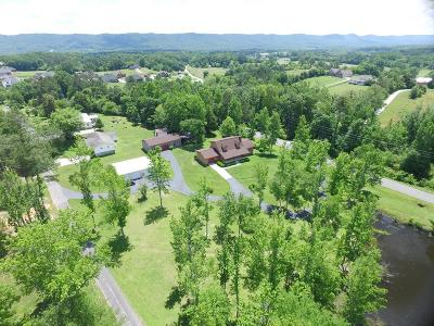 Ringgold Single Family Home For Sale: 132 Patty Road