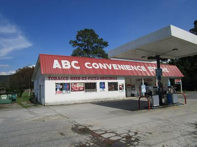 Catoosa County, Whitfield County, Murray County Commercial For Sale: 10692 Hwy 411n