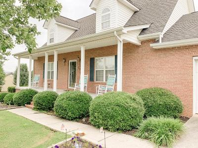 Ringgold Single Family Home For Sale: 41 Chestnut Ridge Road