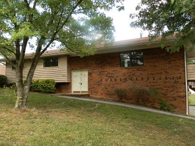 Ringgold Single Family Home For Sale: 210 Larry Drive