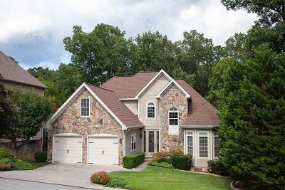 Ringgold Single Family Home For Sale: 129 Blue Jay Parkway