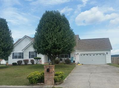 Ringgold Single Family Home For Sale: 115 Windhaven Drive