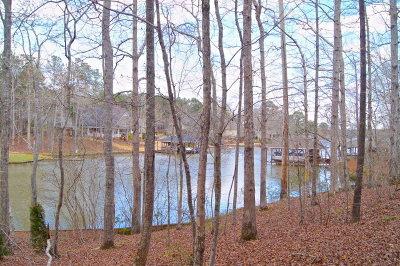 Salem Residential Lots & Land For Sale: Lot 121 Lee Road 2117