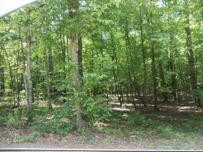 Hamilton Residential Lots & Land For Sale: Lot 2 Savior Lane
