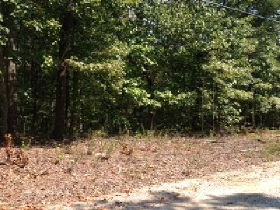 Harris County Residential Lots & Land For Sale: Lot 24 Lake Drive