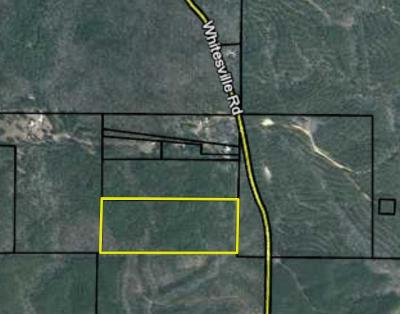 Harris County Residential Lots & Land For Sale: Whitesville Road