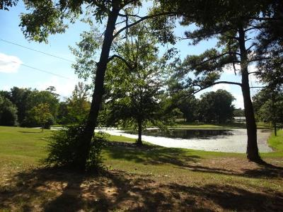 Phenix City Residential Lots & Land For Sale: 1066 Lee Road 0230