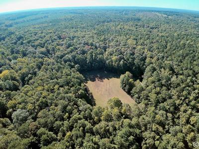 Fortson Residential Lots & Land For Sale: 727 Huling Road