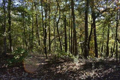 Harris County Residential Lots & Land For Sale: Lot 7b Mulberry Estates
