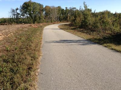Salem Residential Lots & Land For Sale: Tract 1 Lee Road 0348