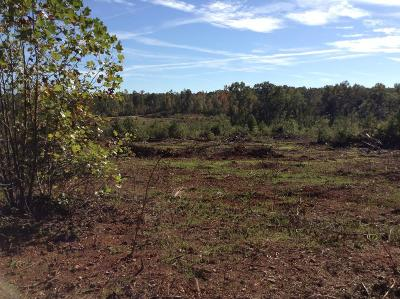 Salem Residential Lots & Land For Sale: Tract 1 , 2 , 3 Lee Road 0348