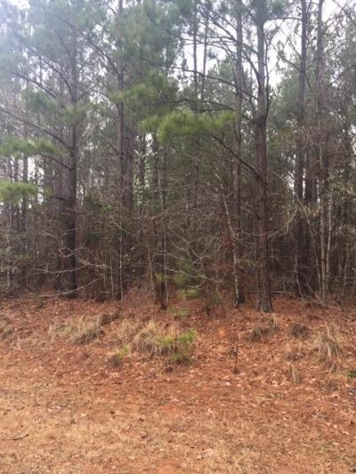 Harris County Residential Lots & Land For Sale: Lot 34 Savior Lane