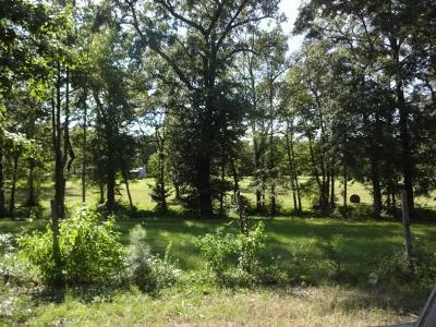 Phenix City Residential Lots & Land For Sale: Parcel 4 Lee Road 0232