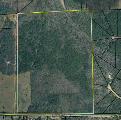 Pine Mountain Residential Lots & Land For Sale: Ll 37 3rd Dist Ga Hwy 018