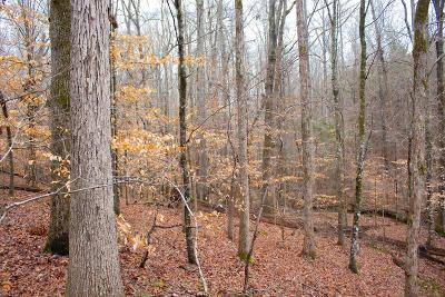 Hamilton Residential Lots & Land For Sale: 4562 Fortune Hole Road